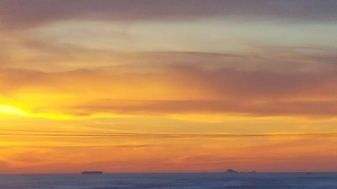 Watercolor via digital zoom #farallonislands #SF #sunset