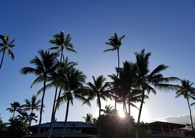 🌴🌴☀️🌴 until next time! #Maui